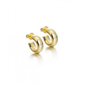 Aros gruesos pequeños plata oro - 3030E100-06